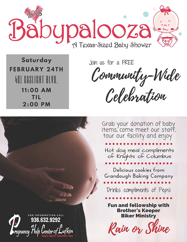 Babypalooza Community-wide Celebration Flyer